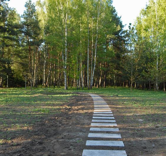 ścieżka prowadząca wgłąb ogrodu