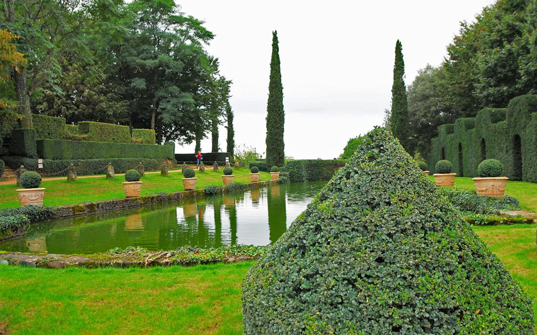 basen ozdobny odbija cięte żywopłoty i rośliny