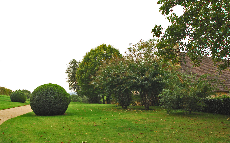 cięte krzewy w parku Eyrignac