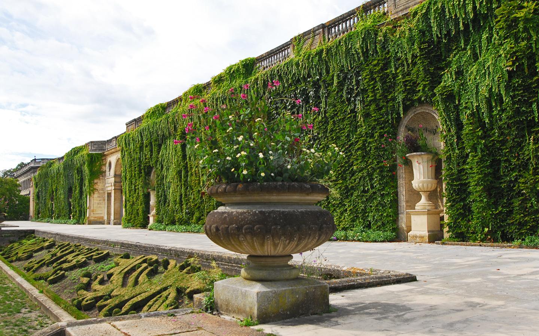widok na ścianę zieleni w parku miejscki w Bordeaux